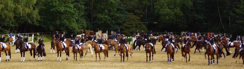 www.Viepferdesport.de
